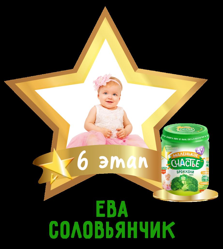 6 etap zvezda